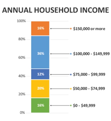 Income breakdown graphic